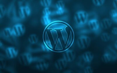 Hva kan wordpress brukes til